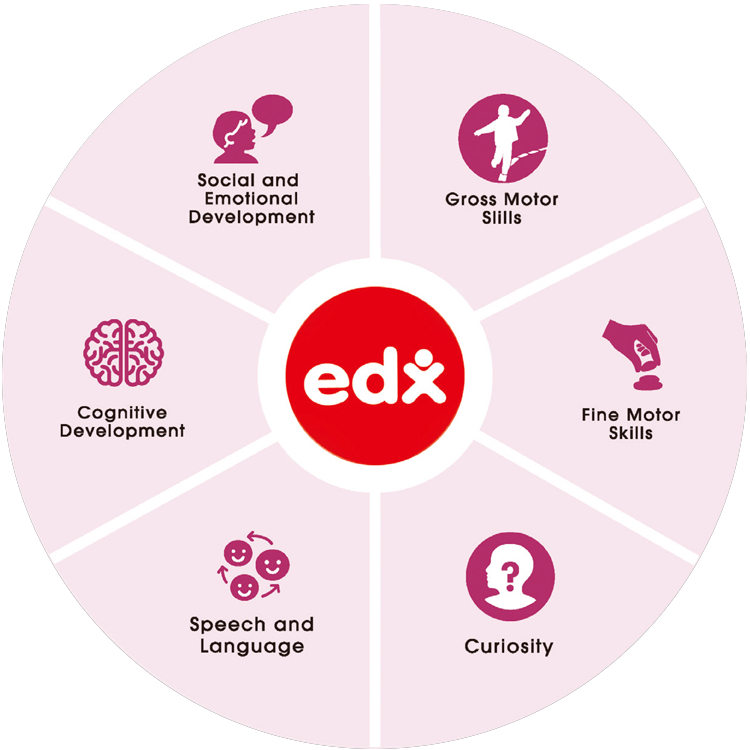Edx Education Key-Developmental-Areas